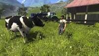 Rinder en der Farming Simulator 2013