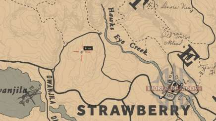 Red Dead Redemption 2: the amulet and the talisman