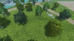 Nuevas texturas de los árboles y la hierba