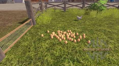 La exactitud de los huevos para Farming Simulator 2013