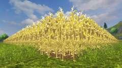 El aumento en el rendimiento de maíz