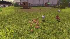 La exactitud de los huevos
