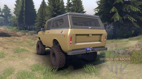 International Scout II 1977 buckskin para Spin Tires