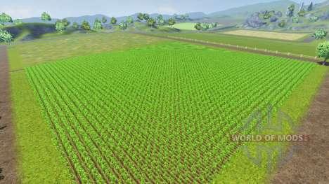 Fiatagri v1.1 para Farming Simulator 2013