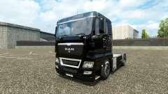 La piel en el V8 de camiones MAN v2.0
