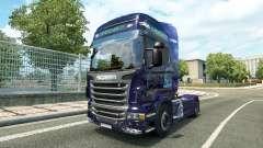 Los consumibles de la piel para Scania camión