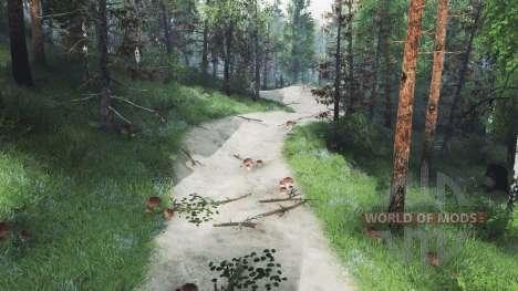 Trail Club para Spin Tires