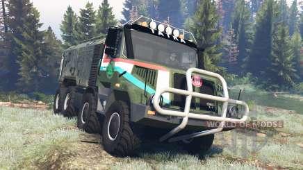 Tatra 163 Jamal 8x8 v4.0 para Spin Tires