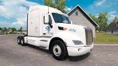 Estados UNIDOS Camión de la piel para el camión