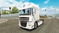 Schmidt Heilbronn skin for DAF truck