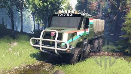Tatra 163 Jamal 8x8 v7.0 para Spin Tires