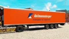 La piel Kollmannsberger para la semi-refrigerado