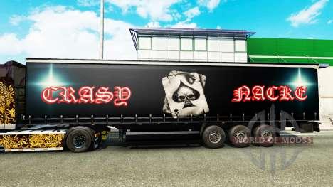 La piel Crasy Trans Logística v2.0 para remolque para Euro Truck Simulator 2