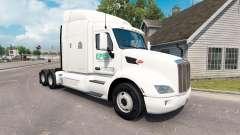 Epes de Transporte de la piel para el camión Pet