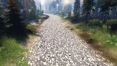 La textura de gris asfalto con grava blanca