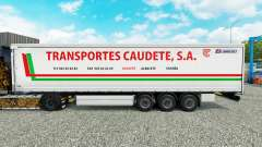 La piel de Transportes Caudete S. A. cortina sem