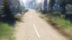 La pálida textura de los dos carriles de asfalto