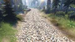 La textura de las piedras