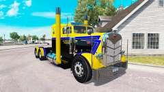 La piel de Larga Carretera Transporte por camión