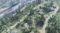 Plata bosque