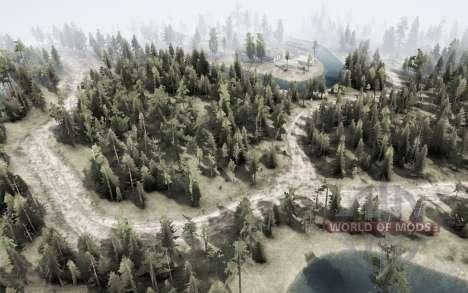 Forest Transit para Spintires MudRunner
