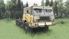 Tatra T813 Kings Off-Road 2