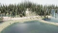 El bosque inundado 2